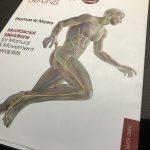【オススメ本】「アナトミー・トレイン」:Thomas W.Myers→筋肉のつながり(連動性)をよりしっかりと理解したい方へ。