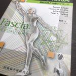 【オススメ本】「膜・筋膜-人体の張力ネットワーク」:武井仁→筋膜に関する最新情報をゲットしたい方へ。