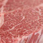 【タンパク質の量とタイミング】1日に必要なタンパク質ってどのくらい?