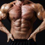 【筋肉の詳細】知っているようで知らない筋肉の仕組み
